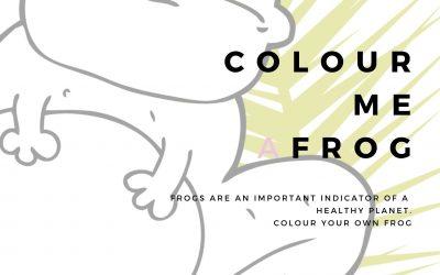 Colour Me A Frog