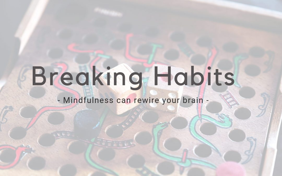 Breaking Bad Habits – Mindfulness Changes Your Brain